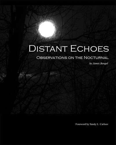 Now Available - Distant Echoes